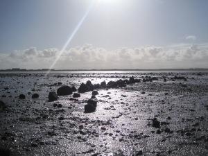 Line of stones at Mawbray