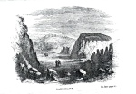 Barricane Bay; an engraving by Gosse from his book 'A naturalist's rambles on the Devonshire coast'.