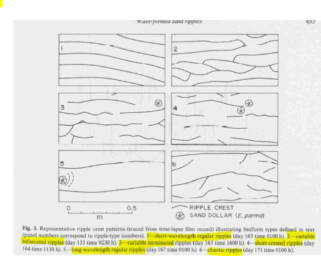 ripple patterns boyd et al 1988