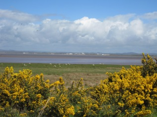 View to the mudflats from Campfield Marsh