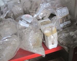 dried mud samples
