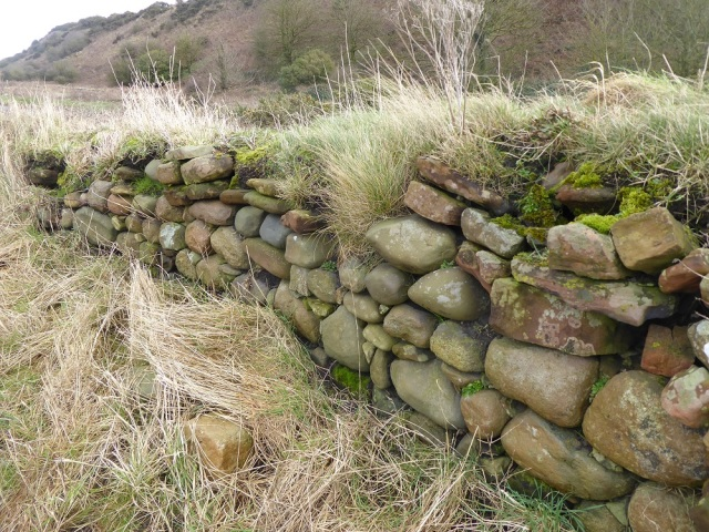 Sea-cobbles and sandstone wall of the kinch